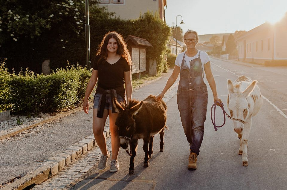 Tierisches Fotoshooting mit den Eseln